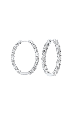 Tru-Reflection Earrings ER24311-4WC product image