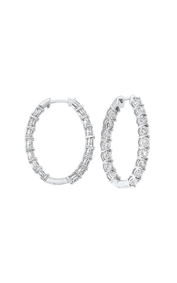 Tru-Reflection Earrings ER24310-4WC product image