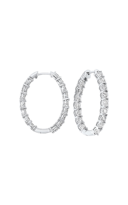 Tru-Reflection Earrings ER24309-4WC product image