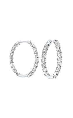 Tru-Reflection Earrings ER24588-4WC product image