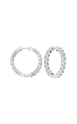 Tru-Reflection Earrings ER24324-4WC product image
