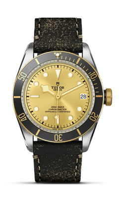 <span class='model_name'> Black Bay S&G 41mm Steel And Gold</span> <br/> <span class='model_number'>M79733N-0003</span>  product image
