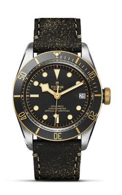 <span class='model_name'> Black Bay S&G 41mm Steel and Gold</span> <br/> <span class='model_number'>M79733N-0007</span>  product image