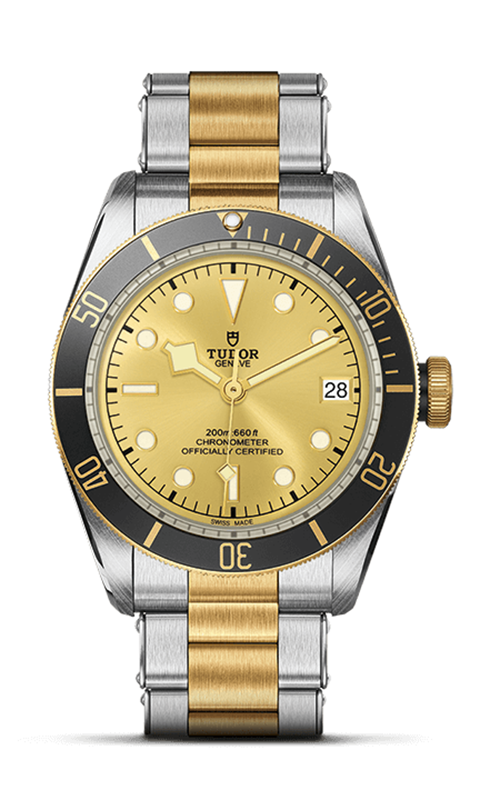 Tudor Black Bay S&G Watch M79733N-0004 product image