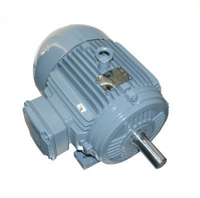 WEG Electric Corp 00718EP3E213T