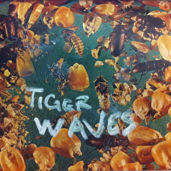 tiger waves - fields, song of the day, canción del día, new music, best new indie rock music, best new indie pop surf bands songs, download, free download, descarga, mp3, fields, descarga canción indie rock, mejores canciones indie 2013, radio internet alternativo independiente méxico, online, internet