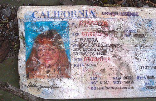 Jenni Rivera Esta Muerta Licensia