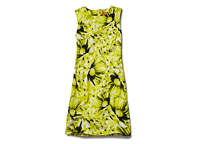Women Skirts/dresses Print Shift Dress