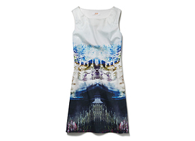 Women Skirts/dresses Photo Print Shift Dress