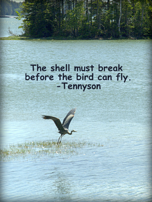 https://s3.amazonaws.com/KOMimages/Monday+Motivators/the+shell+must+break.jpg