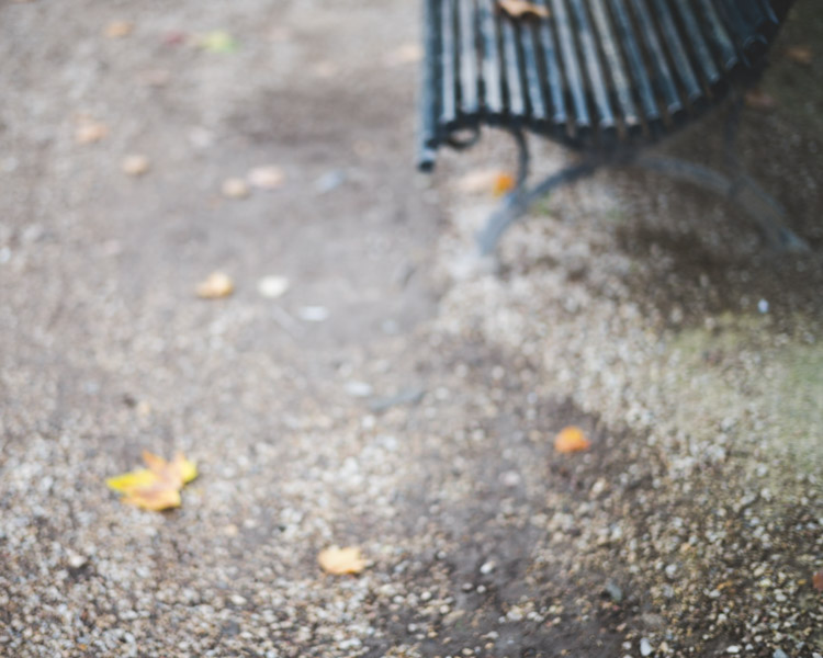 Autumn in Paris