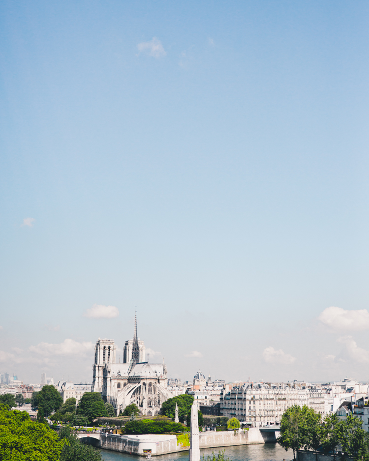 Bird's eye view of Notre Dame