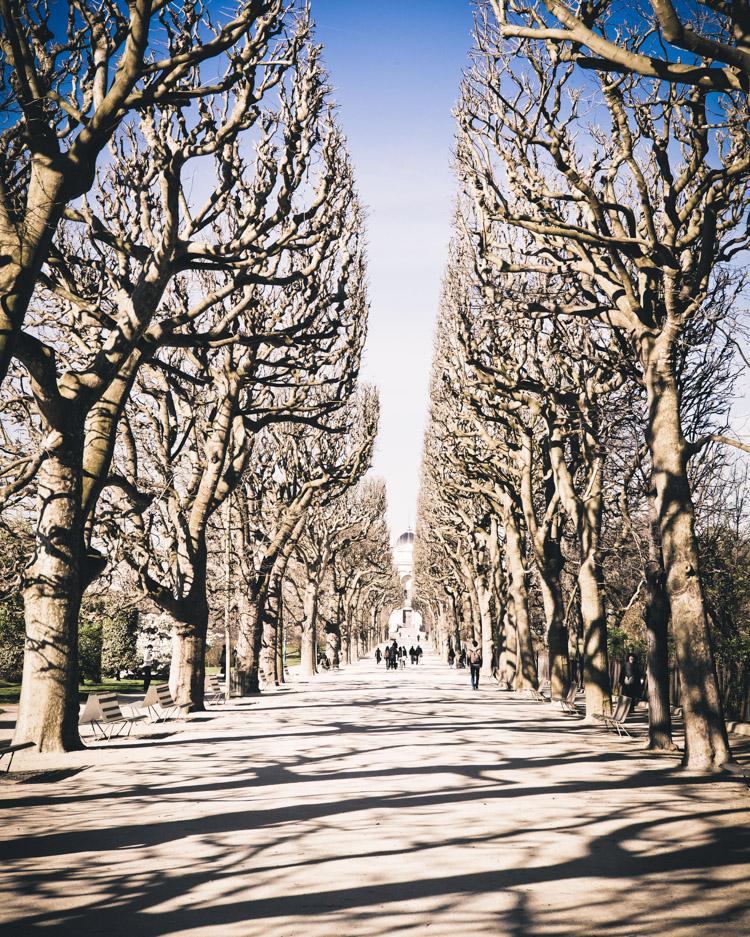 Paris Spring Jardin des Plantes