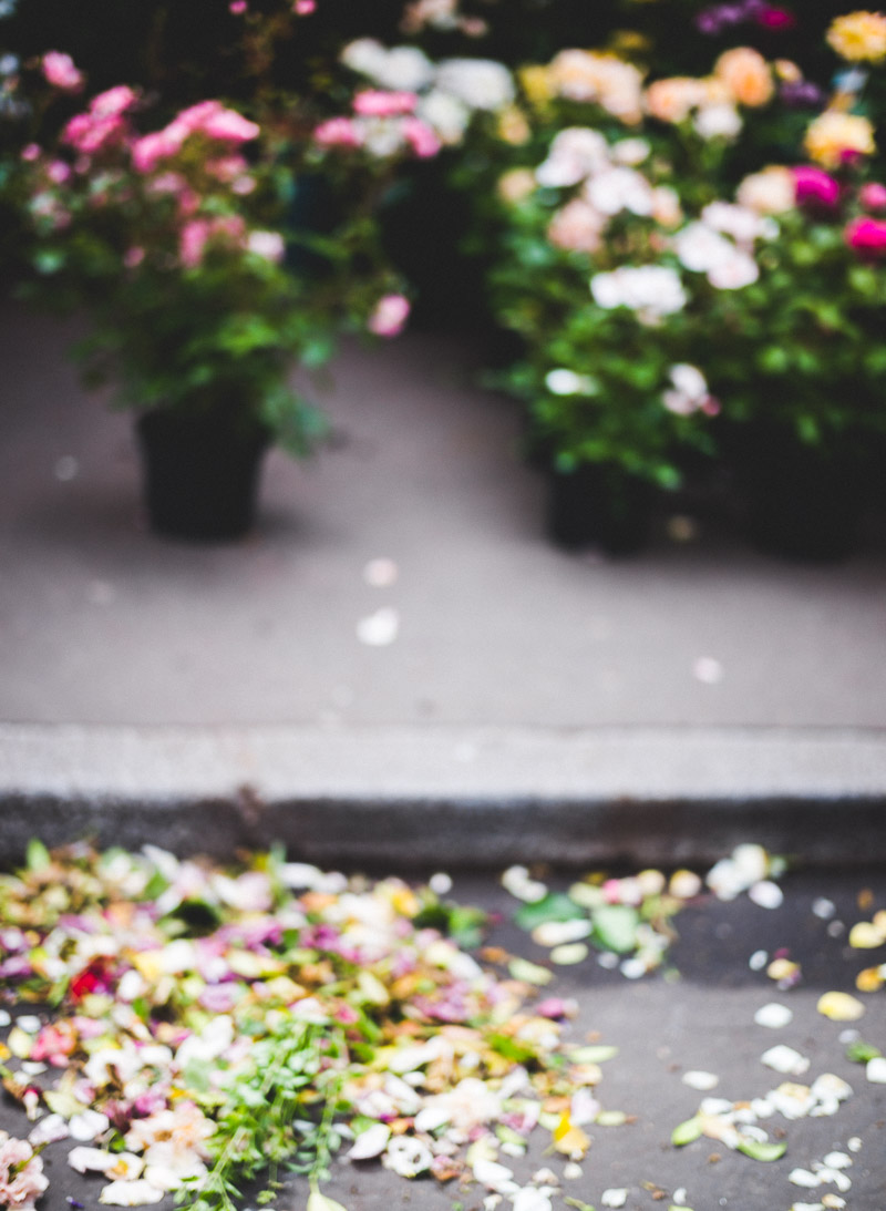 Paris Marche aux Fleurs Paris Flower Market by Catherine Goron