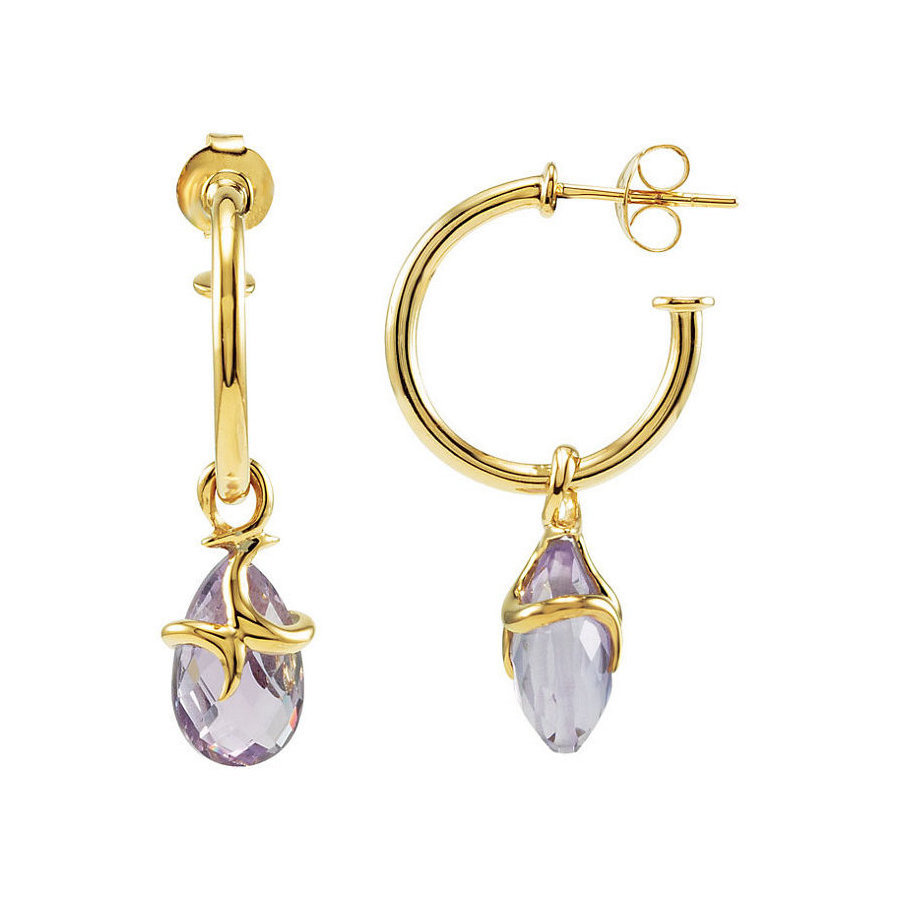 Picture of Lux Yellow Gold Plated Silver Earrings for Women