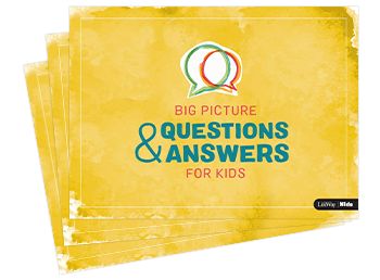 Big Picture Question and Answers Product Cover