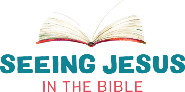 Seeing Jesus in the Bible