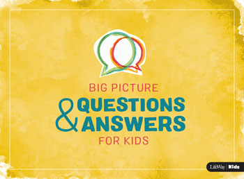 Big Picture Question and Answers Booklet Cover