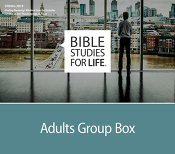 Bible Studies for Life - Adults Group Box