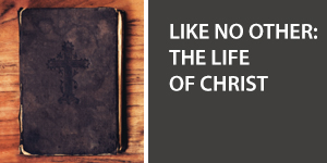 Like No Other: The Life of Christ