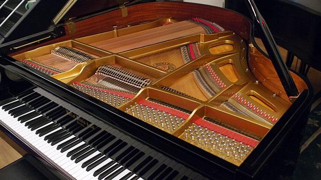 Hallet Davis Baby Grand Piano Dg04722