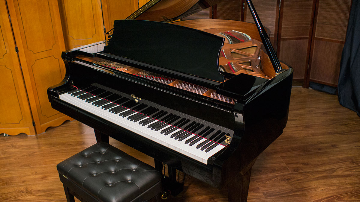best piano learning site norfolk grand piano for sale new zealand piano teacher woodbridge nj. Black Bedroom Furniture Sets. Home Design Ideas