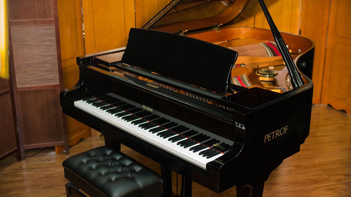 Petrof Grand Piano for Sale - Model III - Online Piano Store