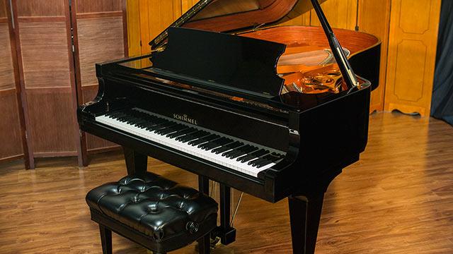 Steinert Baby Grand Piano Model A Living Pianos