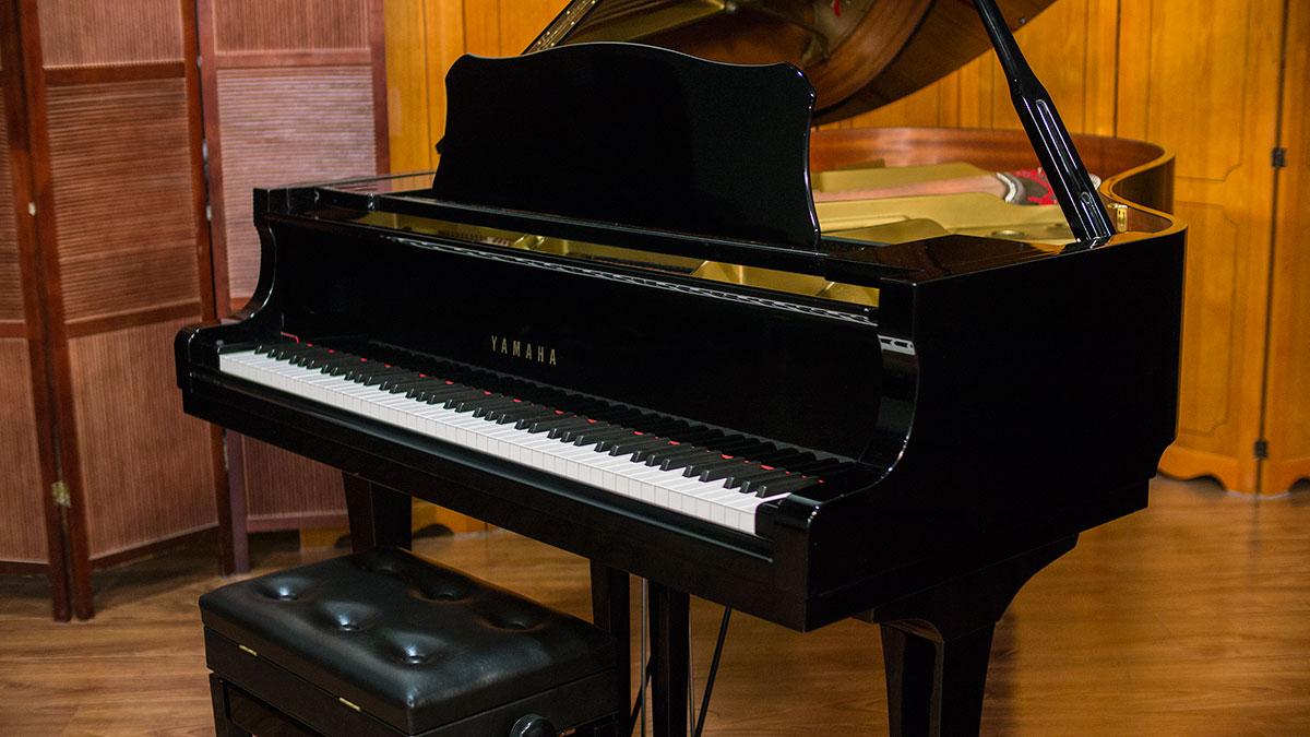 Yamaha Piano Action Model