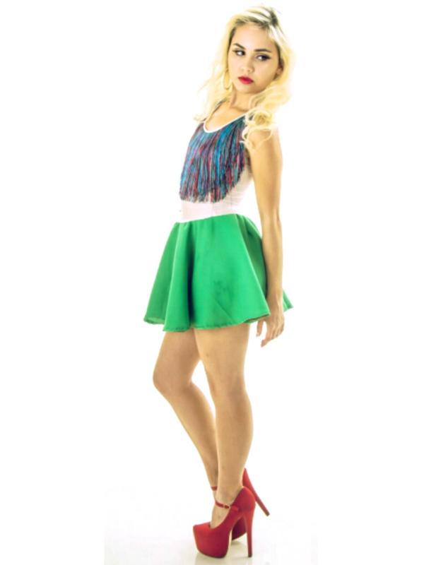 Fringe Skater Dress