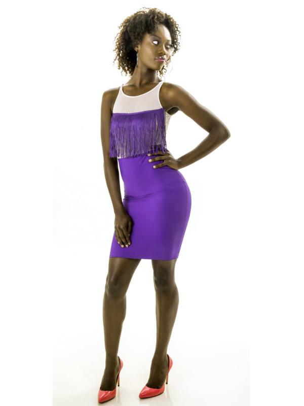 Fringe Mesh Dress
