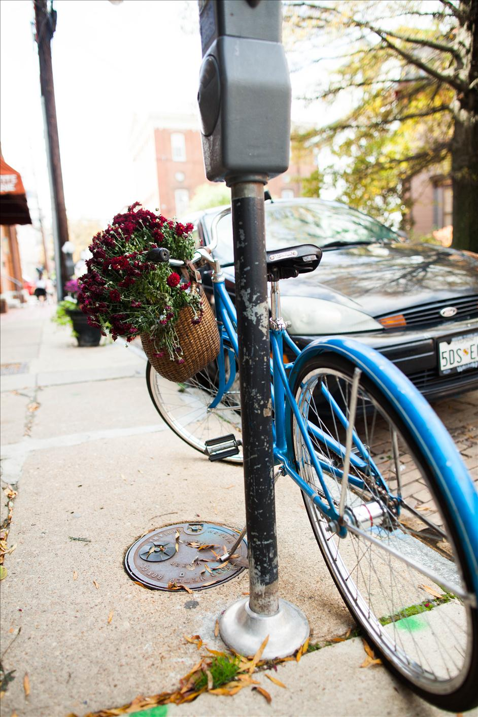 Blue bicycle with flowers in the basket on Maryland Avenue in Annapolis Maryland