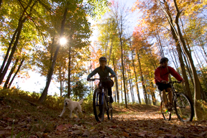 Mountaining biking in fall, Maine