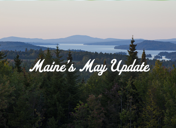 Maine's May Update