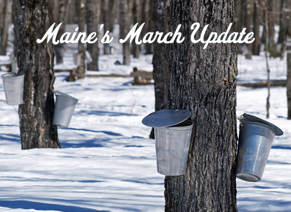 Maine's March Update