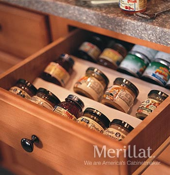 Base Spice Tray Insert