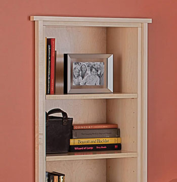 Inset Shelf
