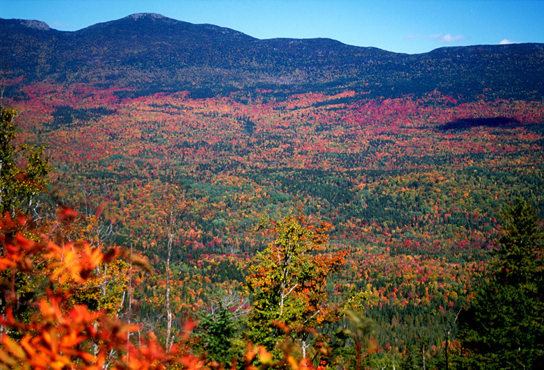 Hike or bike for prime fall foliage views. Credit: Maine Huts & Trails