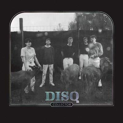 Disq - Collector