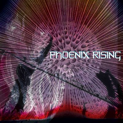 Phoenix Rising by Gallo