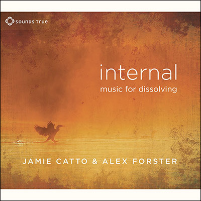 Internal: Music For Dissolving by Jamie Catto & Alex Forster