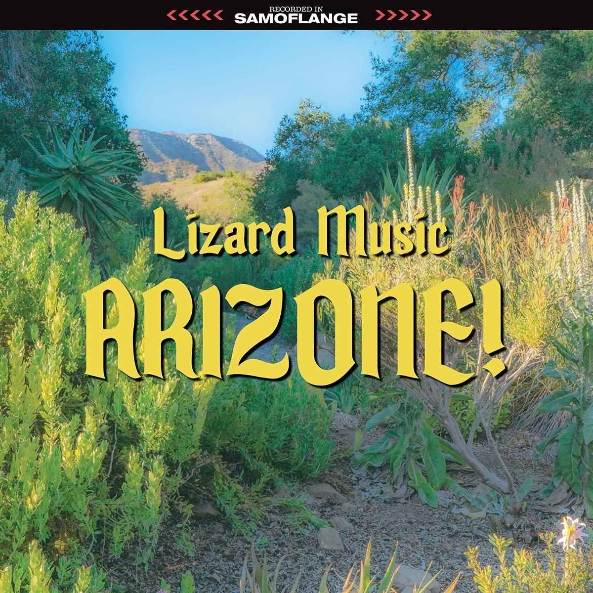 Lizard Music - Arizone!