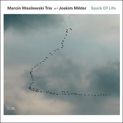 Spark Of Life by Marcin Wasilewski Trio