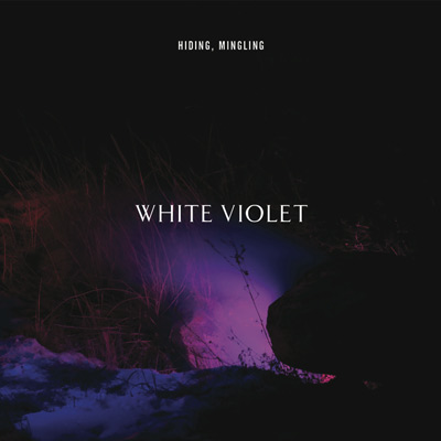 Hiding, Mingling by White Violet