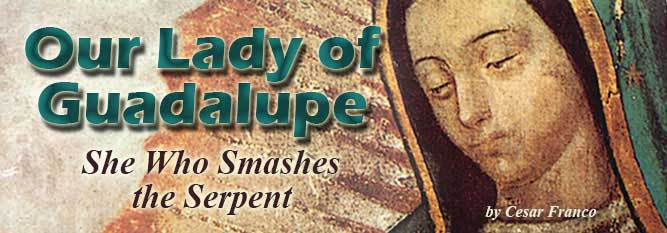 Header-Our Lady of Guadalupe: She Who Smashes the Serpent