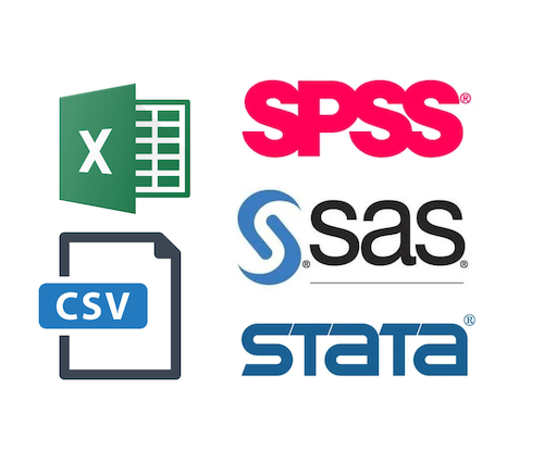 Supports various file formats: SPSS, Excel, CSV, STATA, SAS data files