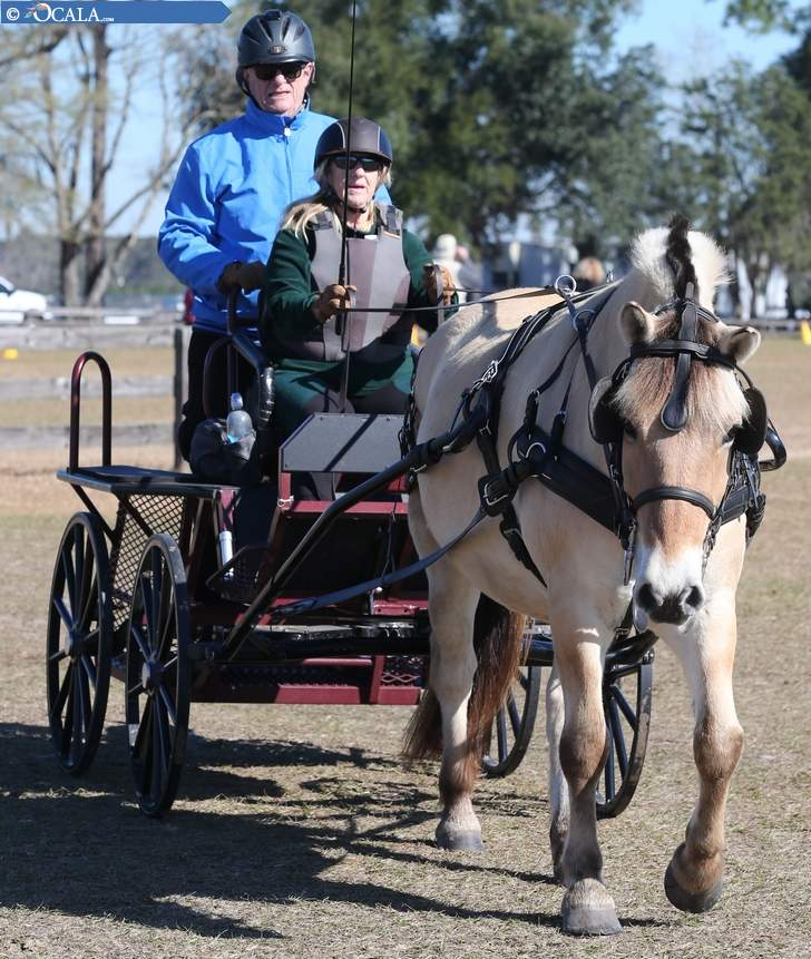 Horse Park Wins Big