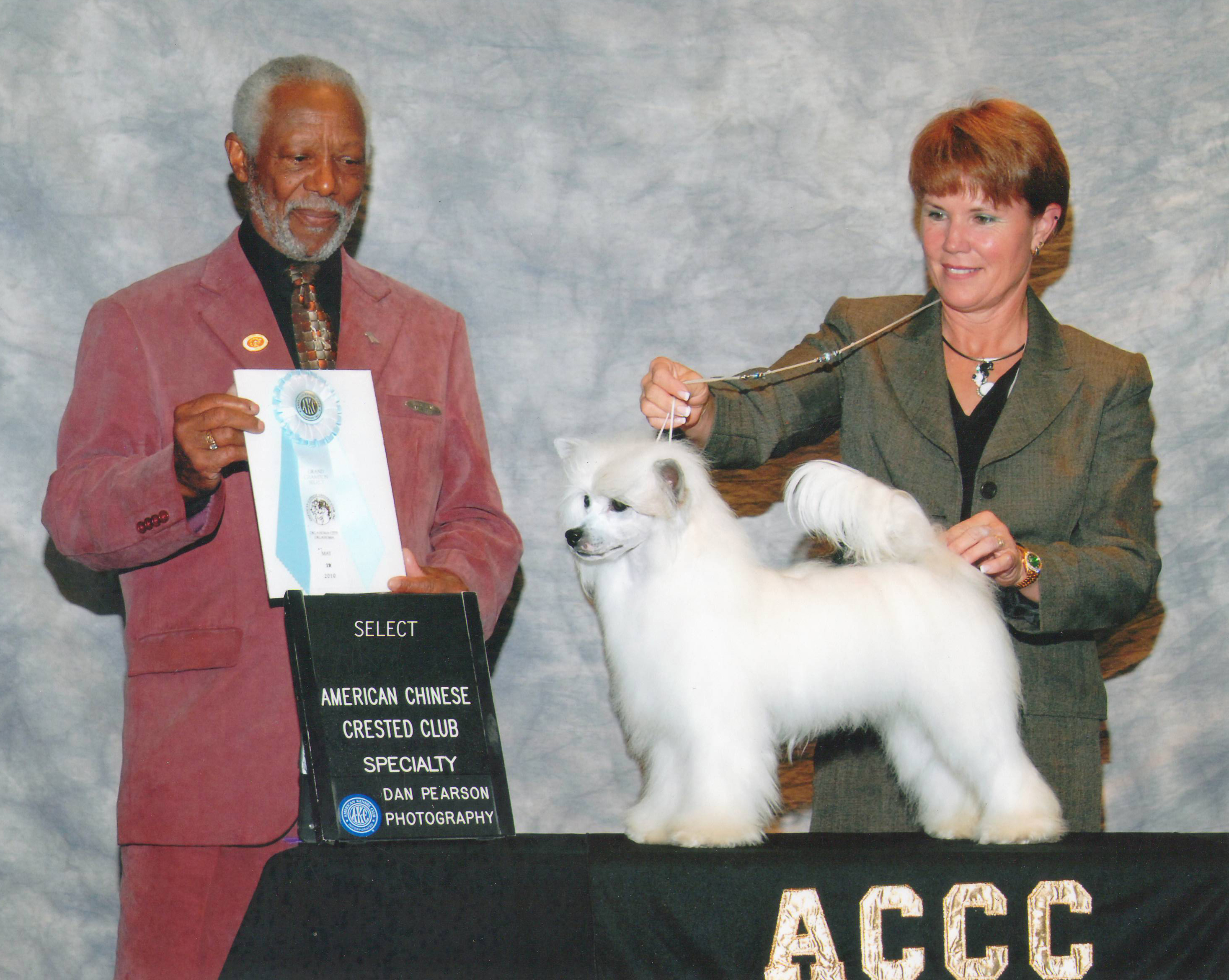Multiple GP Winning GCH Vanitonia Devil Wears Prada-