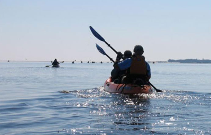 Image of some kayakers having fun on the bay