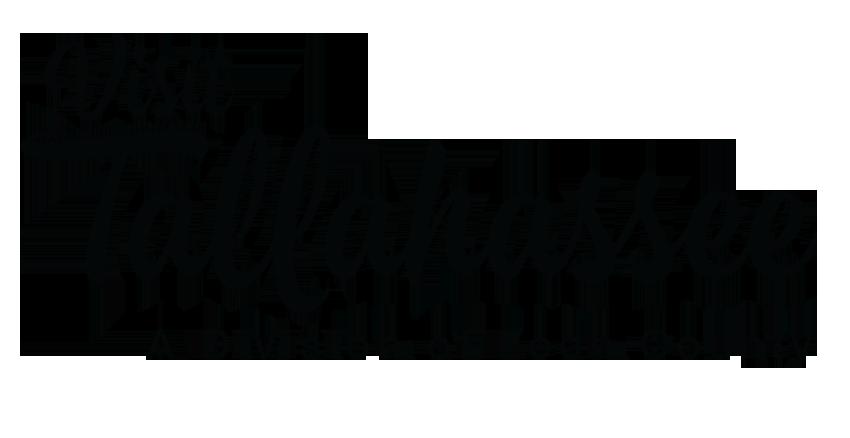 Visit Tallahassee Logo